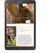 книга Дизайн пользовательского интерфейса Искусство мыть слона